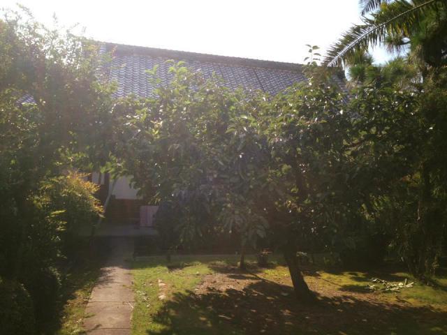 大阪府養楽寺の建物その他