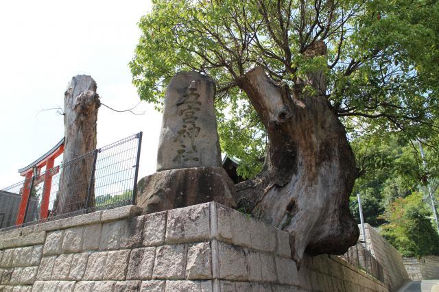 五宮神社の建物その他