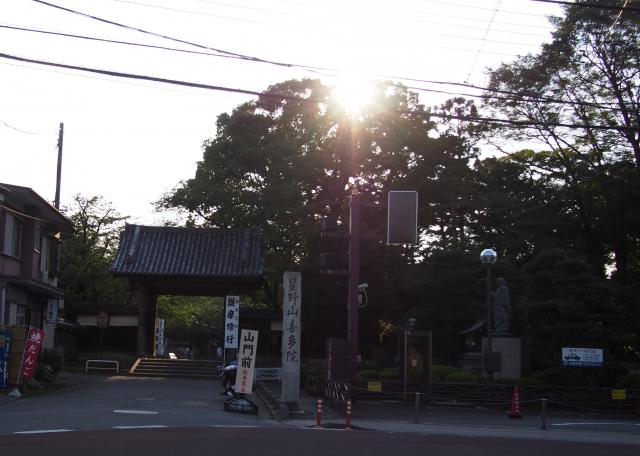 埼玉県白山神社の建物その他