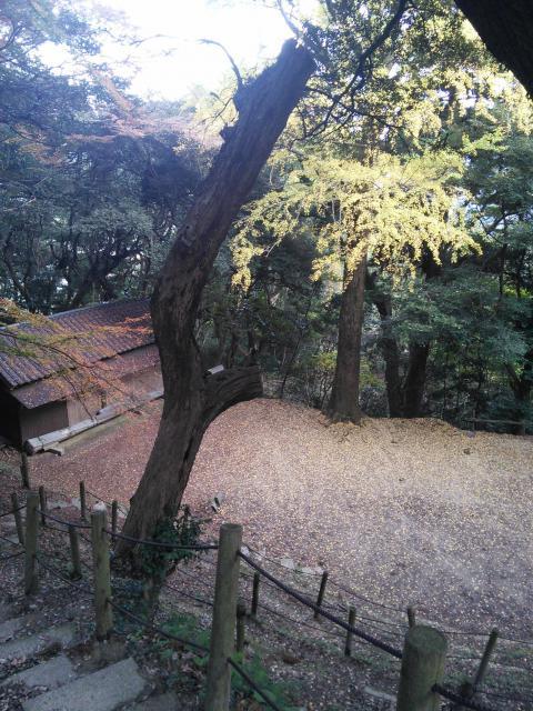 福岡県白山多賀神社の建物その他