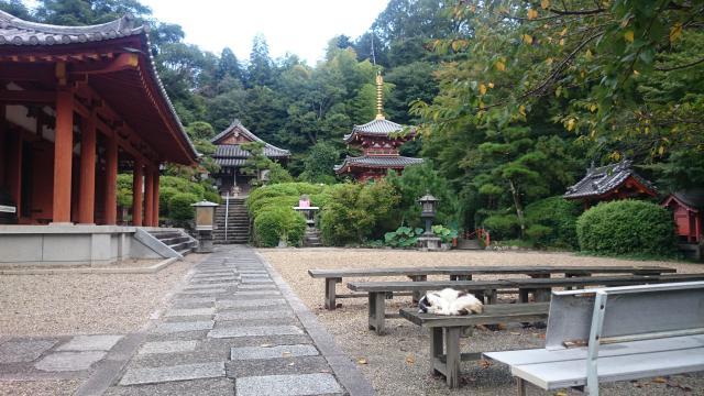 大神神社の近くの神社お寺|平等寺(三輪山平等寺)