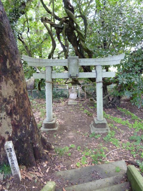 千葉県厳島神社の鳥居
