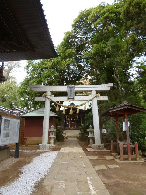 千葉県飯綱神社の鳥居