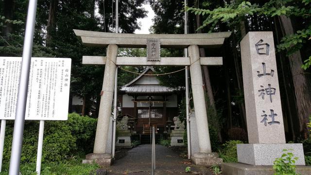 静岡県白山神社の鳥居