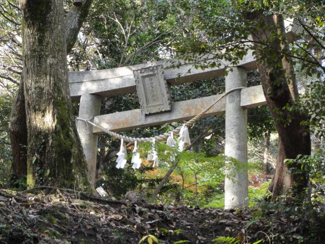 福岡県白山多賀神社の鳥居