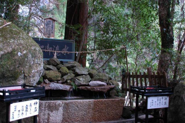 飛瀧神社の自然
