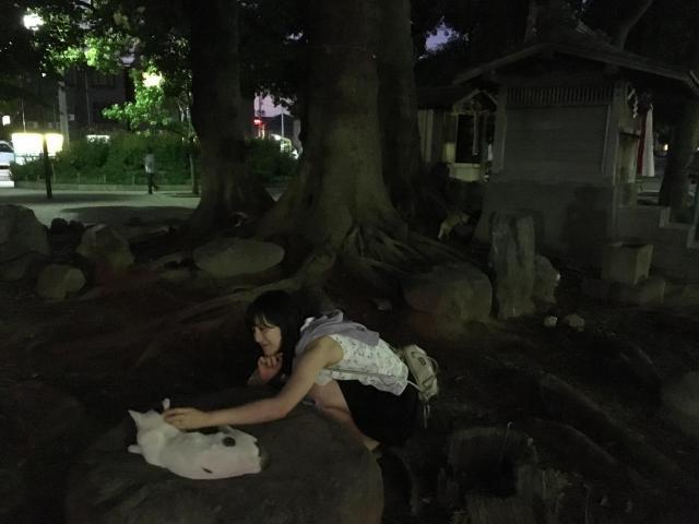 行徳弁天の森21(千葉県行徳駅) - 動物の写真
