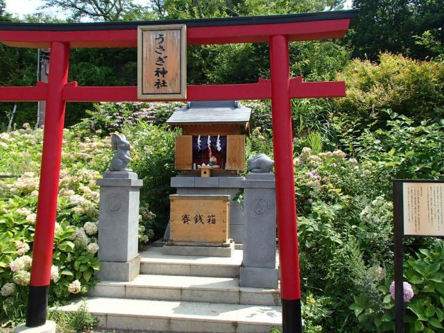 うさぎ神社の鳥居