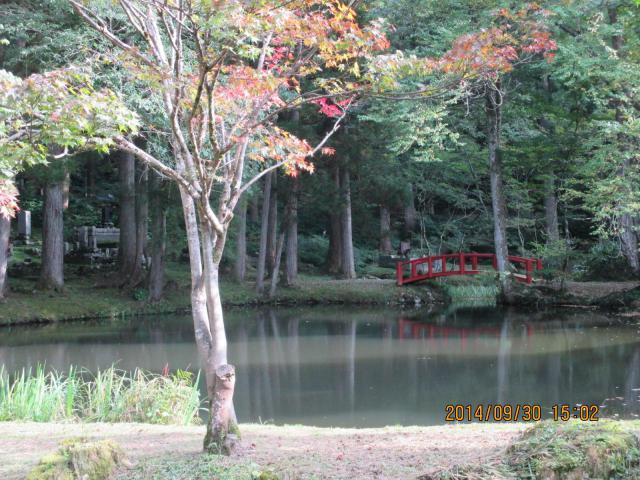 雲洞庵の庭園