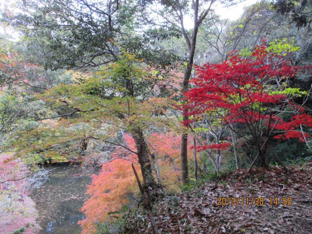 小松寺の庭園