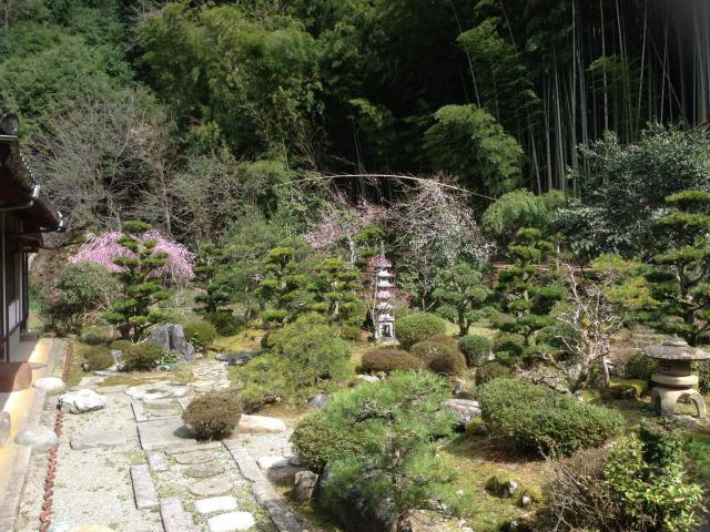 鳥取県満正寺の庭園