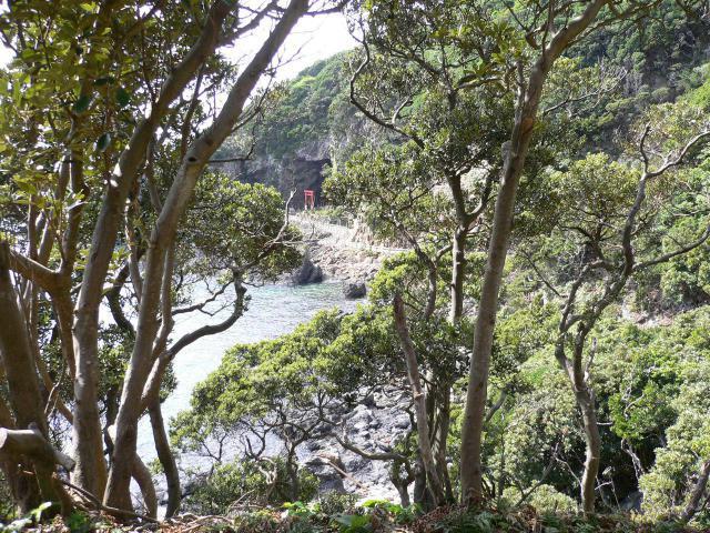 鹿児島県八筈嶽神社の景色