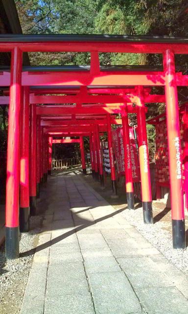三光稲荷神社(愛知県犬山遊園駅) - 鳥居の写真