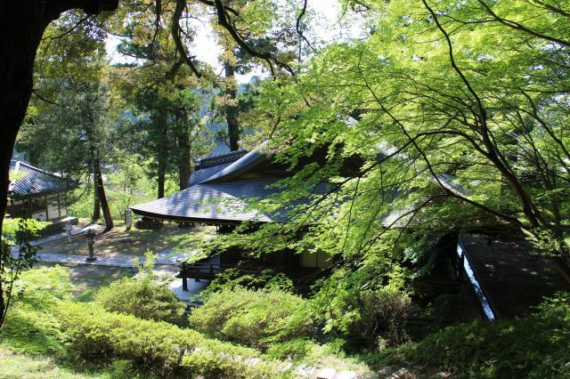 大阪府弘川寺の自然