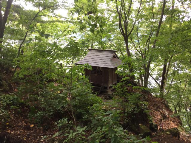 十和田神社の自然