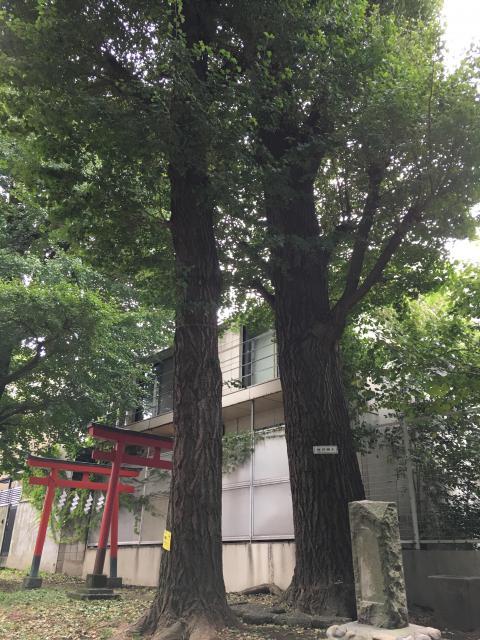 松羽稲荷神社の自然