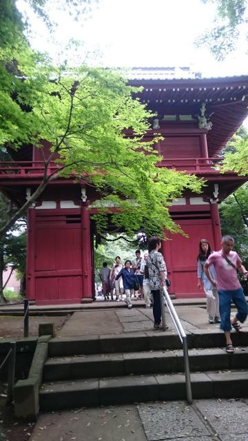 本土寺の山門