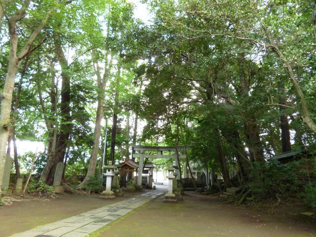 千葉県七百餘所神社の鳥居