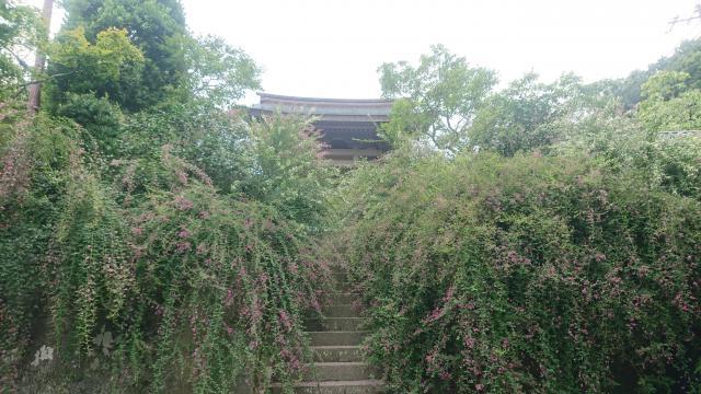 海蔵寺の建物その他