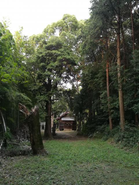 福岡県的原神社の自然