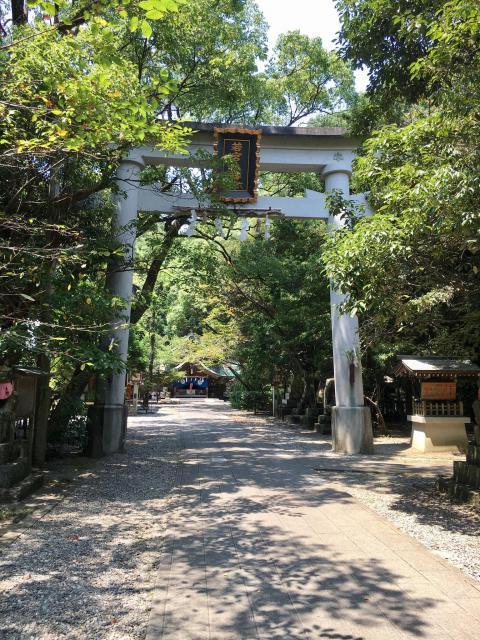 高知県若宮八幡宮の鳥居
