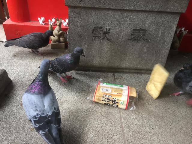 東京都隆栄稲荷神社の動物