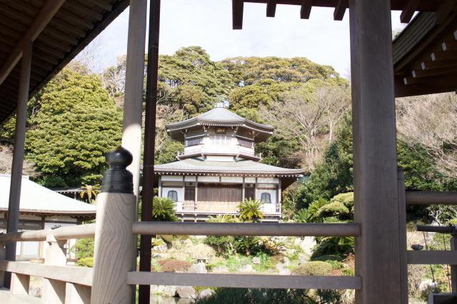 神奈川県光明寺の写真