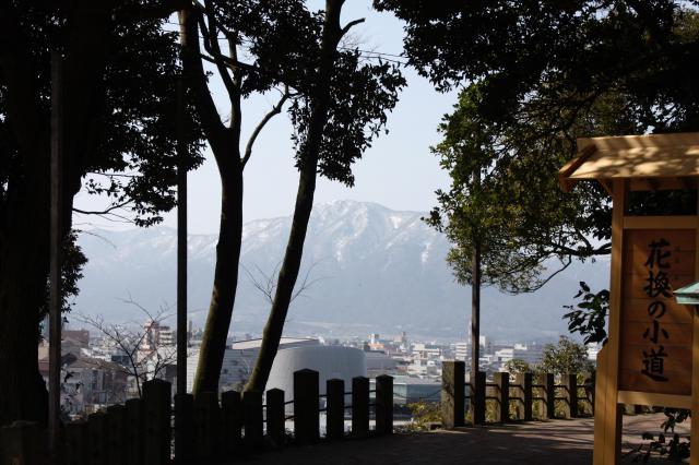 福井県金崎宮の写真