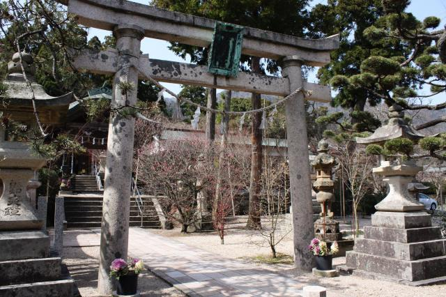 福井県常宮神社の鳥居