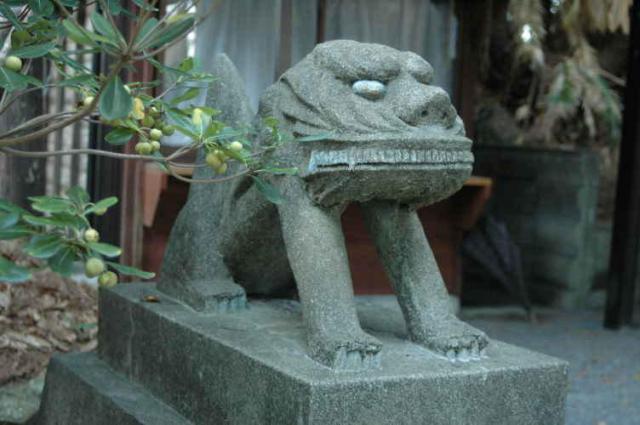 鹿児島県高千穂神社の狛犬