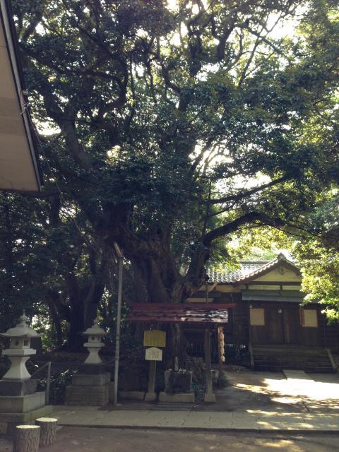 千葉県丹生神社の本殿