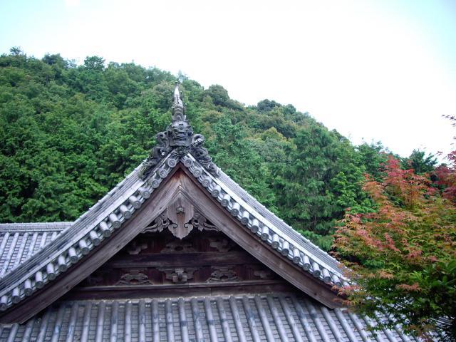 徳島県熊谷寺の写真