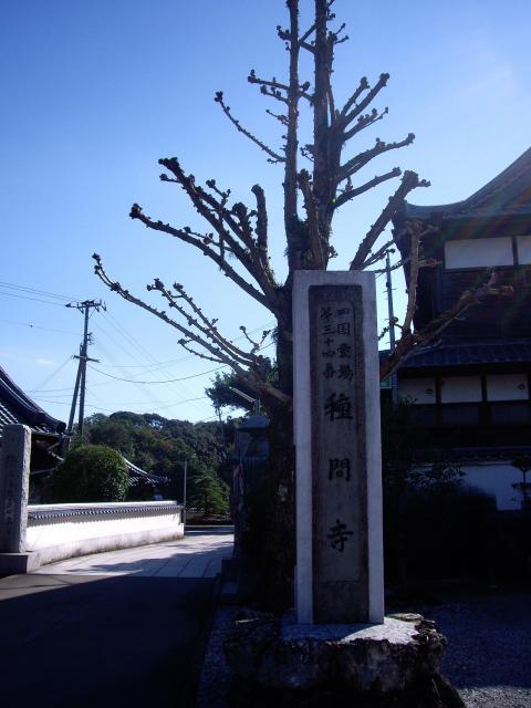 高知県種間寺の建物その他