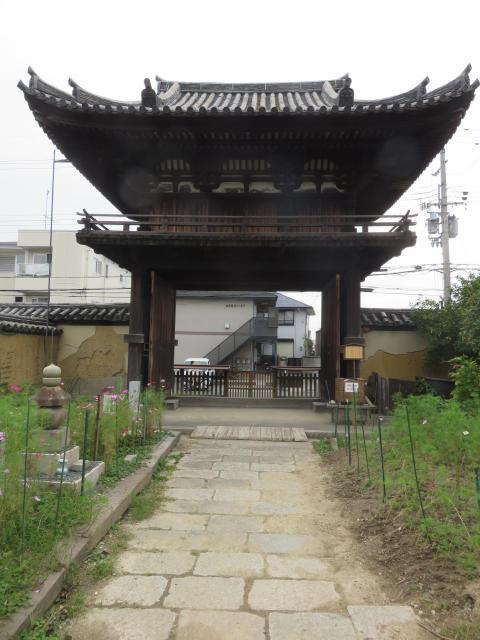 奈良県般若寺の山門