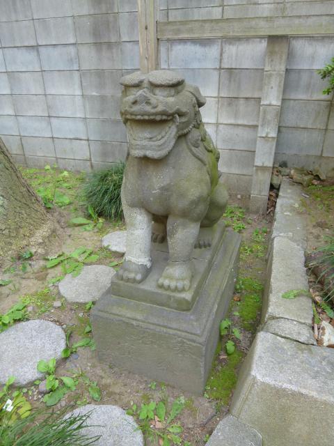 東京都須賀神社の狛犬
