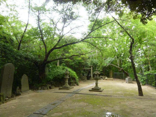神明社の自然