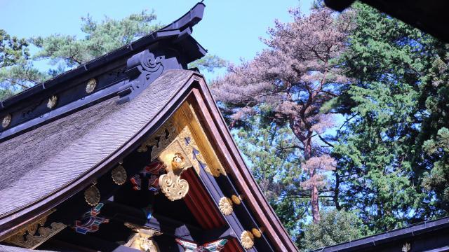 大崎八幡宮の建物その他