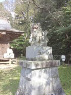 桜川磯部稲村神社の狛犬
