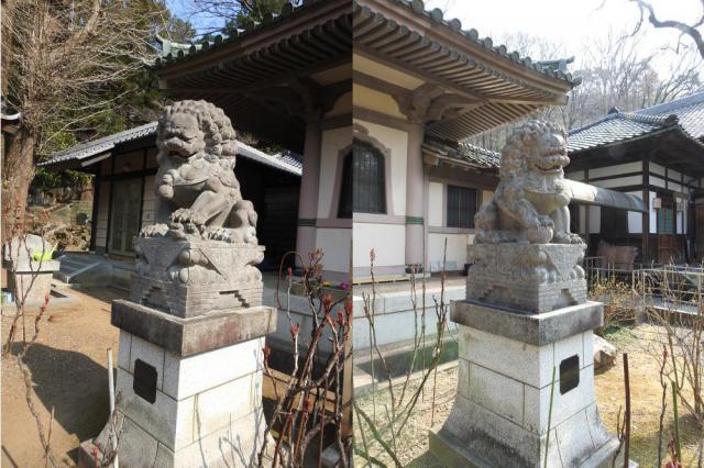 長林寺(西宮長林寺)の狛犬