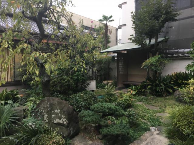天正寺の庭園