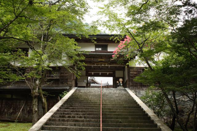 瑠璃寺の山門