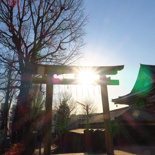 東京都上田端八幡神社の鳥居