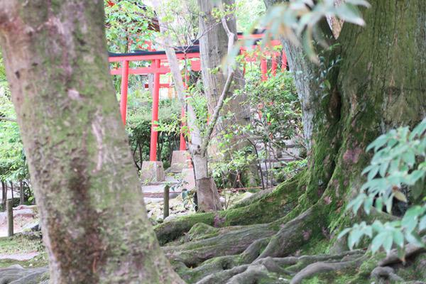 石川県金澤神社の写真