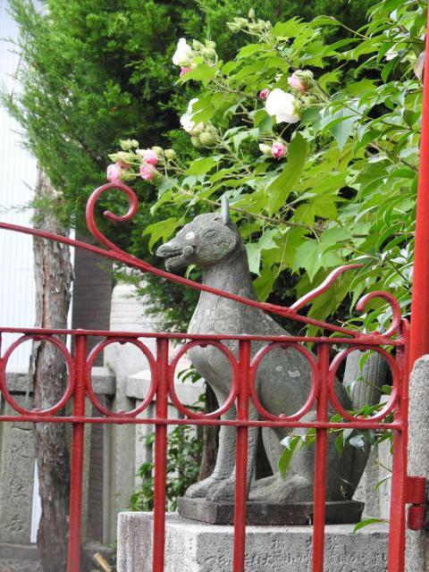 栄稲荷神社(金刀比羅宮境外末社)の狛犬