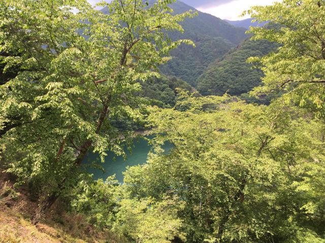 小河内神社の自然