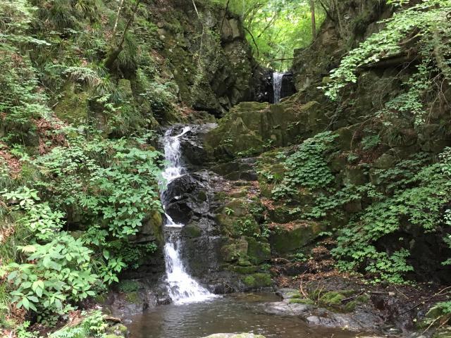 九頭竜神社の自然