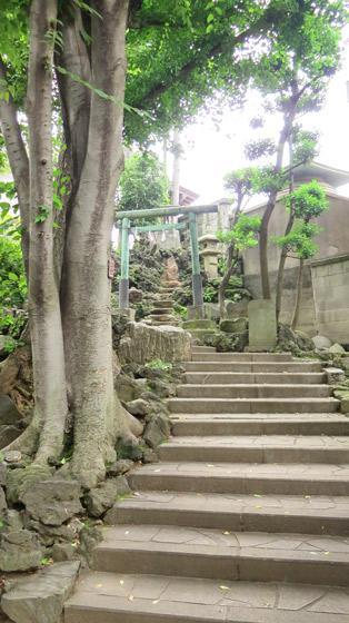 東京都田端八幡神社の自然