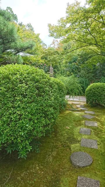大阪府伊勢寺の写真