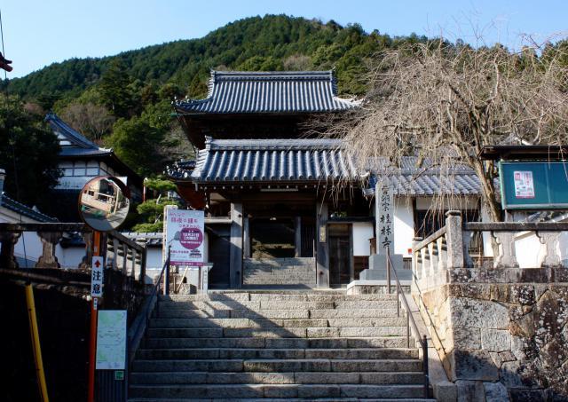 桂林寺の山門
