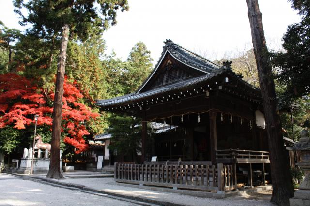 滋賀県日牟禮八幡宮の本殿